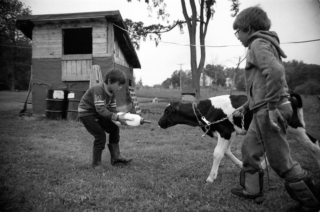 Kids with Calf