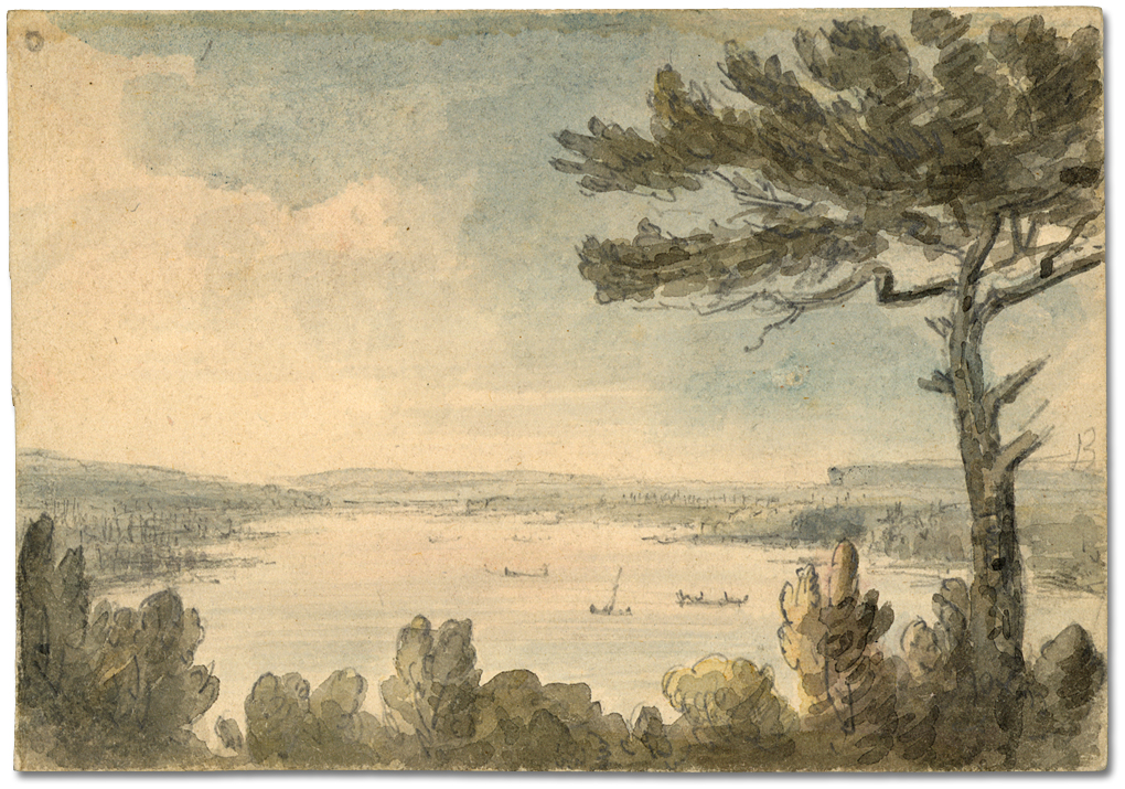 Cootes_paradise_from_hill